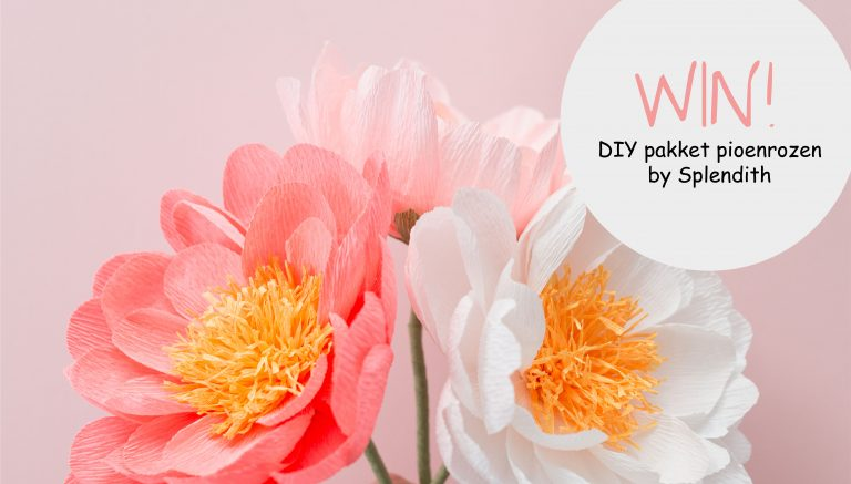 WIN! DIY pakket papierenbloem van Splendith